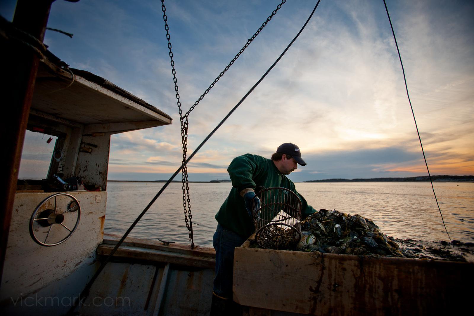 Cape Cod Photographer Travel